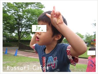 jr237.jpg