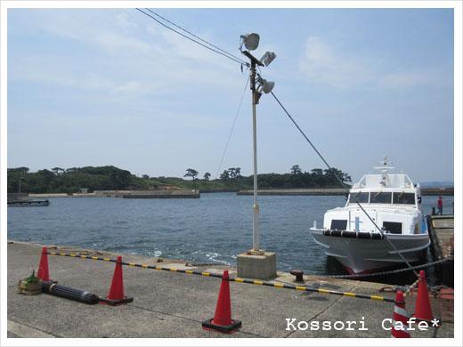 sakushima1.jpg