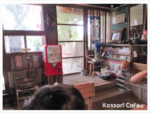 sakushima16.jpg