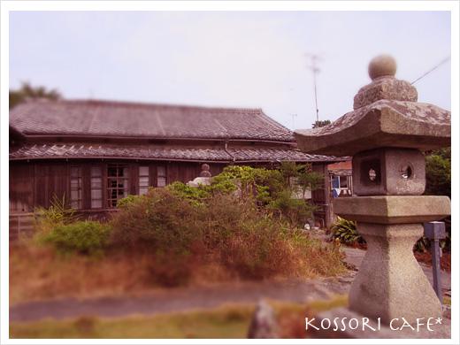 sakushima39.jpg