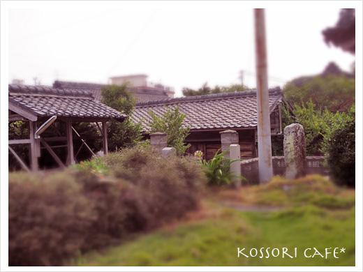 sakushima40.jpg