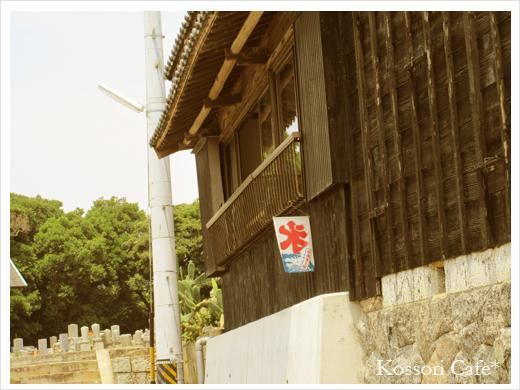 sakushima6.jpg