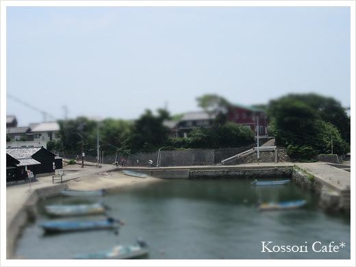sakushima9.jpg