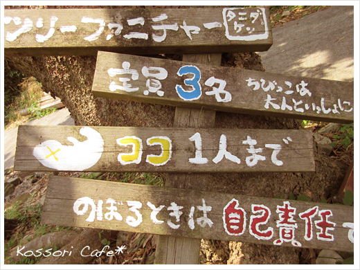 sakushima26.jpg